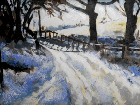 Snowy path in Cheshire